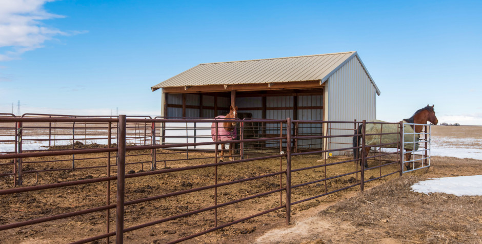 Fort Collins Co Horse Property For Sale
